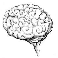 alt-cerebro1